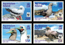 Ascension 2016 Red Footed Booby 4v set MNH