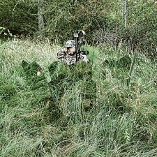 Ghostblind 4 Panel Predator Blind NEW Deer Turkey Hunting Mirror Reflector