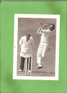 #D318. NEWSPAPER PROMO  PICTURE OF DENNIS LILLEE