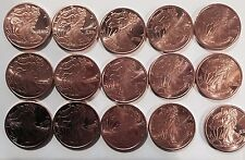 Lot of 15 Walking Liberty 1oz Copper Coin Doomsday Prepper Bug Out Bag Trade