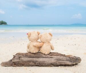 Cute Teddy Bears - Couple Beach Sun Sand Love Wall Art Canvas Picture Prints