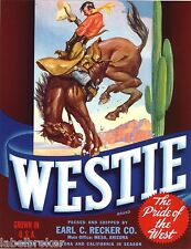GENUINE VEGGIE CRATE LABEL WESTIE BUCKING BRONCO COWBOY MESA AZ VINTAGE RODEO
