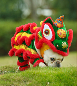 Chinese Lion Dance Dog and cat's clothes Funny lion costume Dogs Cats cosplay