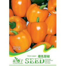 FD1283 Orange Sweet Pepper Seed Vegetable Seeds ~1 Pack 8 Seeds ~ Free Shipping