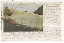Foot of Great Glacier, Canadian Selkirks Vintage 1906 Canada Postcard