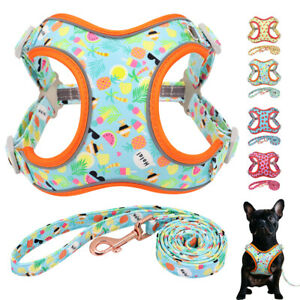 Adjustable Reflective Dog Harness and Leash for Small Large Dogs French Bulldog