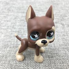 LPS#817 Great Dane Dog Littlest Pet Shop Animal Figure Brown Puppy Star Blue Eye