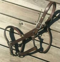 HDR Fancy Stitched Padded Leather Halter Warmblood Size WB Brown Leather Halter