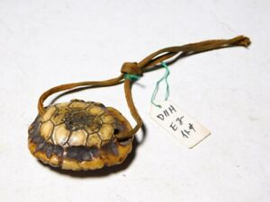 Rare motif Turtle Shell NETSUKE Antler Japan Original Edo Inro Antique