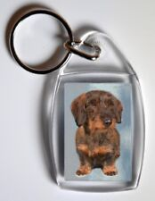Wire Haired Dachshund Key Ring by Starprint - Auto Combined Postage