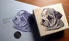 "P7  Bulldog puppy rubber stamp 2x2.25"""