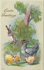 Vintage Postcard Easter Greetings Bunny peeking at Chicks and Chicken, #608