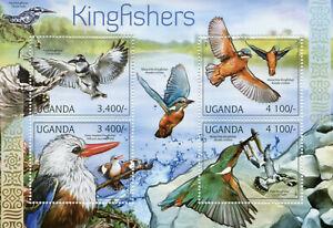 Uganda Birds on Stamps 2012 MNH Kingfishers Pied Malachite Kingfisher 4v S/S