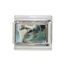 Koala photo Italian charm - fits 9mm classic Italian charm bracelets