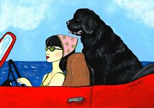 New ListingSale Art Print Newfoundland Dog Driving Miss Daisy- Supports Newfie Dog Rescue