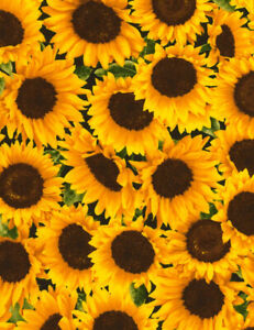SUNFLOWERS 100 % cotton fabirc from Timeless Treasures - leaves, flower, floral