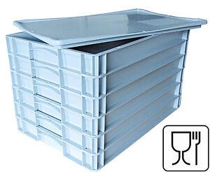 """6x Pizzateigbehälter + 1x Deckel gratis!  Pizzaballenbox 600x400x70mm  """"NEU"""""""