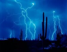 METAL MAGNET Cacti Cactus Lightning Night Blue Sky Weather MAGNET