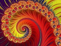 Photo Fractal Art Flower Art Picture Canvas Art Print