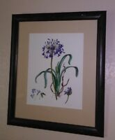 Great Original, Watercolor Painting by Carolyn A. Cohen