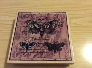 """Large w/m Rubber Stamps Happen Inc. Insect Sampler. 4.25""""square."""