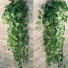 2 bunch artificial silk Evergreen hanging spider plants faux Scindapsus