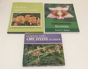 Australian Native Orchids In Colour   Leo & Growing Orchids & Orchids Month By..