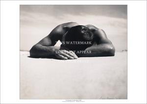 "The Sunbaker A3 Print – Max Dupain Classic 1937 – Poster 42 x 29 cm 23"" x 17"""