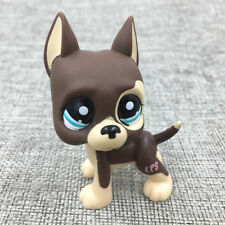 LPS#1519 Littlest Pet Shop Brown Cream Great Dane Dog Blue Eyes Puppy Cute Gift