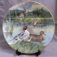 W S George 1993 Collectors Plate - The Pintail, From Living with Nature MIB