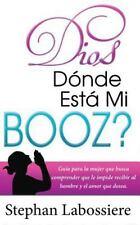 Dios Donde Esta Mi Booz?: Guía para la Mujer Que Busca Comprender Que le...