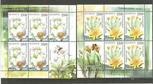 Belarus: 2 mint sheetlets, endangered flowers, 2009, Mi#769-770, MNH