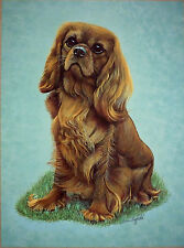 "SALE- CAVALIER KING CHARLES SPANIEL BRIAN HUPFIELD DOG PRINT 12 X 16"" - REDUCED"