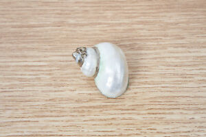 White Shell With Gold Trim Pendant