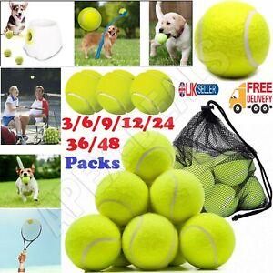 3/24/36 Tennis Balls Good Quality Sports Outdoor Fun Cricket Beach Dog Ball Game