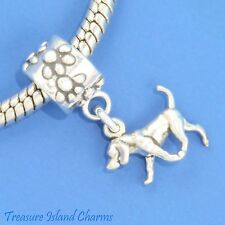 American Foxhound Dog .925 Solid Sterling Silver European Dangle Bead Charm Euro