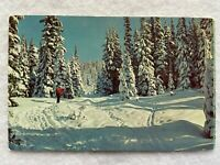 A skier in the mountains Vintage Postcard