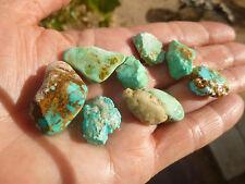 turquoise variscite  rough  lot Ithaca peak kingman Arizona cabbing 25.8 grams