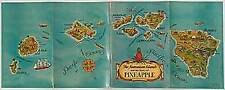 Isabel N YOUNG / The Hawaiian Islands and the Story of Pineapple 1935