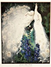 """WHITE PEACOCKS And DELPHINUMS Large Art Print Poster 40x 33"""" by Jesse Arms Botke"""