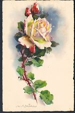 BELGIAN POSTCARD A TRADITIONAL ROSE BY CATHERINE KLEIN 1928 Verviers