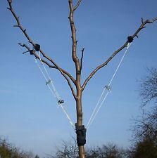 Obstbaum-Nanny  Bindeset zur Erziehung junger Obstbäume, z.B. Apfelbaum, Birne..