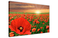 RED POPPY FIELD SUNSET PICTURES FRAMED CANVAS WALL ART PRINTS FLORAL DECORATION