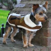Doggie Design Dog Coat Brown Bomber Dog Jacket - Black Top Flight Dog Jacket
