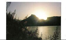 Bf13659 lever de soleil sur un champ d epilobes france front/back image