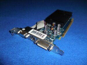 GF 6200TC SUPPORTING 256MB DDR TV DVI PCI-E Video Graphics Card PV-T44P-RANG V1
