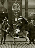 OLD PHOTO Amos The Donkey Barnsley Football Clubs Official Mascot