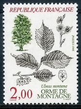STAMP / TIMBRE FRANCE NEUF N° 2385 ** FLORE ULMUS MONTANA