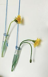 FLOWER VASES of HARMONY - Glass Tubes Home Hanging Wedding Decor