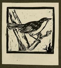 Antique Print-BIRD-BRANCH-Polman-ca. 1940